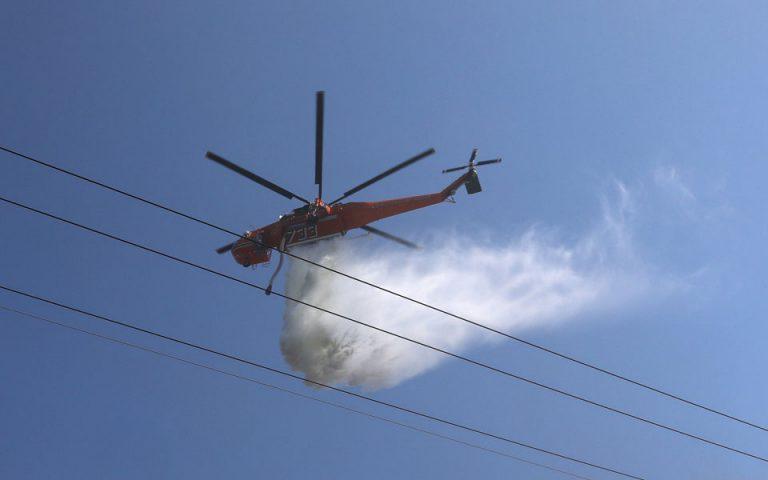 Πυρκαγιά σε δασική περιοχή στη Σιθωνία Χαλκιδικής