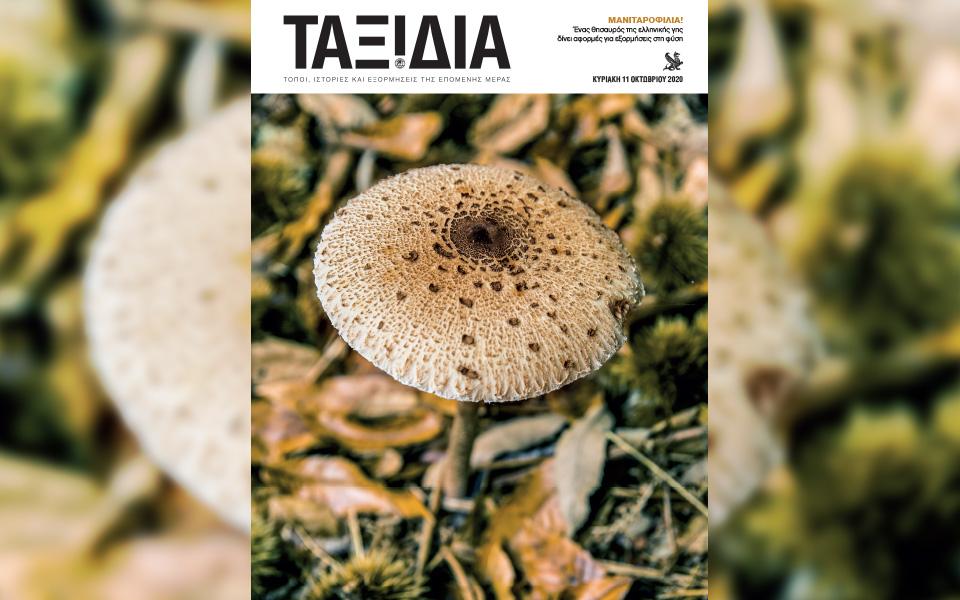 ayti-tin-kyriaki-me-tin-kathimerini-gastronomos-kapa-taxidia5