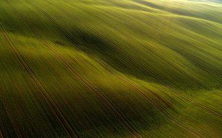 epaselect epa08851238 An aerial photo taken with a drone shows winter wheat fields near Abaliget, Hungary, 29 November 2020.  EPA/Tamas Soki HUNGARY OUT