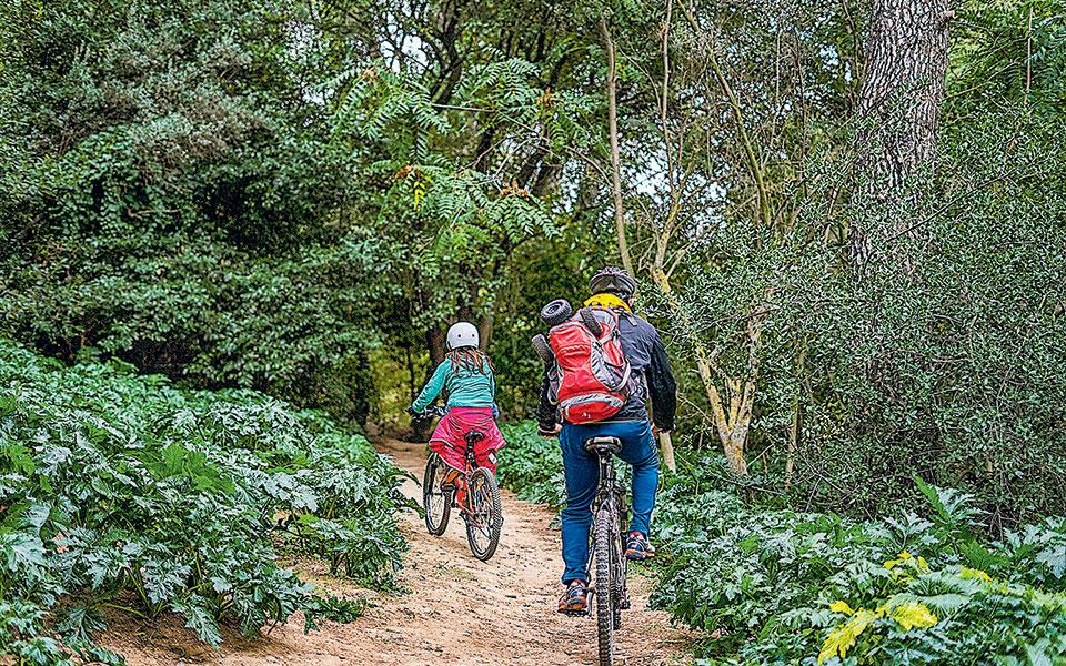 Η κυριακάτικη συννεφιά βοήθησε την άσκηση. Ποδηλασία στο κομμάτι πριν από την Πολυδρόσου (Φωτογραφίες (φωτογραφίες. ΜΑΡΙΚΑ ΤΣΟΥΔΕΡΟΥ).