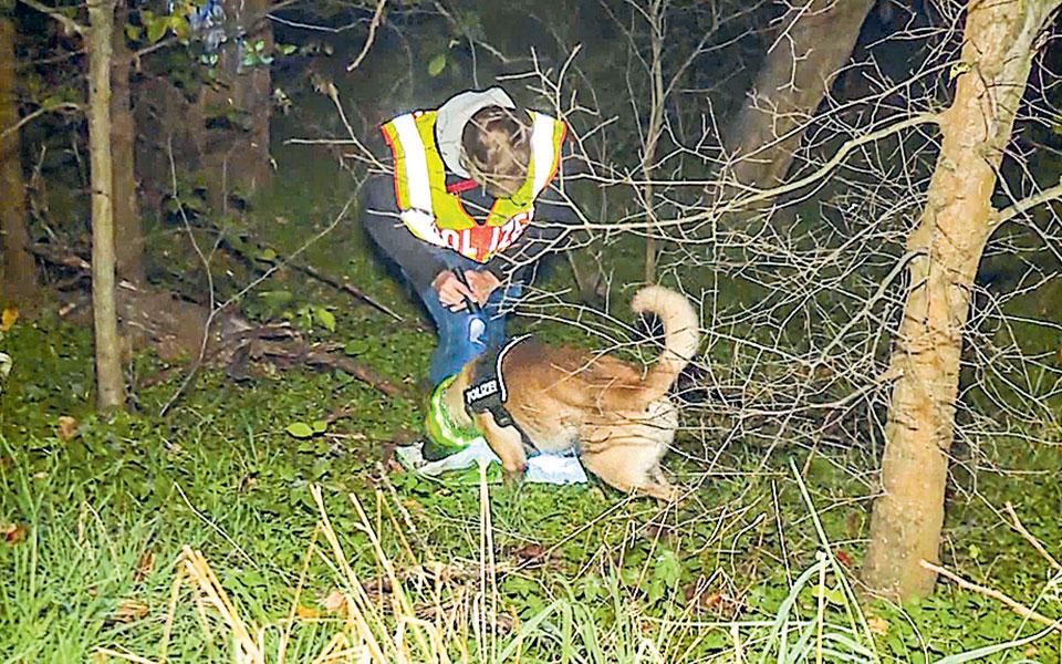 Σκυλιά ιχνηλάτες οδήγησαν τους αστυνομικούς στο διαμέρισμα του υπόπτου, όπου οι ειδικοί εντόπισαν και ίχνη αίματος του θύματος (φωτ. A.P.).