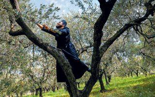 Ο 27χρονος μοναχός Κλάουντιο Κορσάρο κόβει ένα κλαδί ελιάς στο ελληνικό αββαείο του Αγίου Νείλου, όπου ζει ασκητικά μαζί με άλλους εννέα μοναχούς. Οι Βασιλειανοί, που ακολουθούν την ελληνορθόδοξη λειτουργία, έχτισαν τη μονή στην Γκροταφεράτα της Ιταλίας, νότια της Ρώμης, το 1004, πενήντα χρόνια πριν από το Μεγάλο Σχίσμα, του 1054 (φωτ. REUTERS / Guglielmo Mangiapane).
