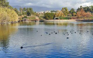 Το υδάτινο στοιχείο ήταν απαραίτητο για τη δημιουργία του περιβαλλοντικού πάρκου, γι' αυτό δημιουργήθηκαν τρεις τεχνητές λίμνες.