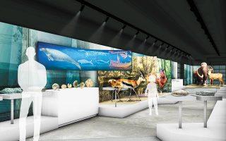 Το μουσείο βρίσκεται υπό ανακαίνιση. Στόχος είναι οι επισκέπτες να ξεκινούν από τα φυσικά φαινόμενα και το πώς διαμορφώθηκε ο ελλαδικός χώρος τα τελευταία 20 εκατ. χρόνια και να φθάνουν στο σήμερα, στην εποχή κατά την οποία ο άνθρωπος έχει επιβληθεί στο φυσικό περιβάλλον και τις συνέπειες που αυτό έχει.