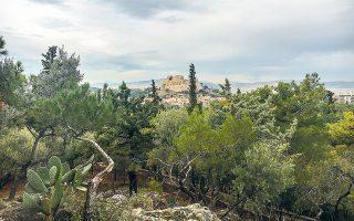 Η θέα της Ακρόπολης και της Πλάκας από τον Λόφο Αρδηττού, με την τσιμεντούπολη απούσα, είναι σχεδόν καρτποσταλική (Φωτογραφίες: ΜΑΡΙΑ ΚΩΒΑΙΟΥ).
