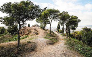 Ο λόφος του Στρέφη βρίσκεται στην καρδιά της πόλης, ανάμεσα στις οδούς Πουλχερίας, Ειρήνης Αθηναίας, Εμμ. Μπενάκη και Ανεξαρτησίας (φωτογραφίες ΝΙΚΟΣ ΚΟΚΚΑΛΙΑΣ).