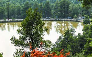 Η λίμνη έχει πλάτος 130 μέτρων και βάθος 9 μέτρων, ενώ λέγεται και Κιθάρα λόγω του σχήματός της. (Φωτογραφίες: ΝΙΚΟΣ ΚΟΚΚΑΛΙΑΣ)