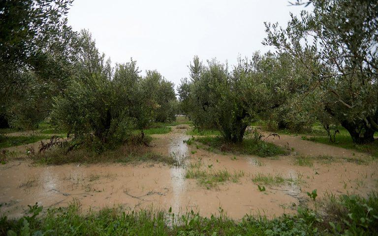Σέρρες: Σε κατάσταση έκτακτης ανάγκης οι δήμοι Εμμανουήλ Παππἀ και Βισαλτίας