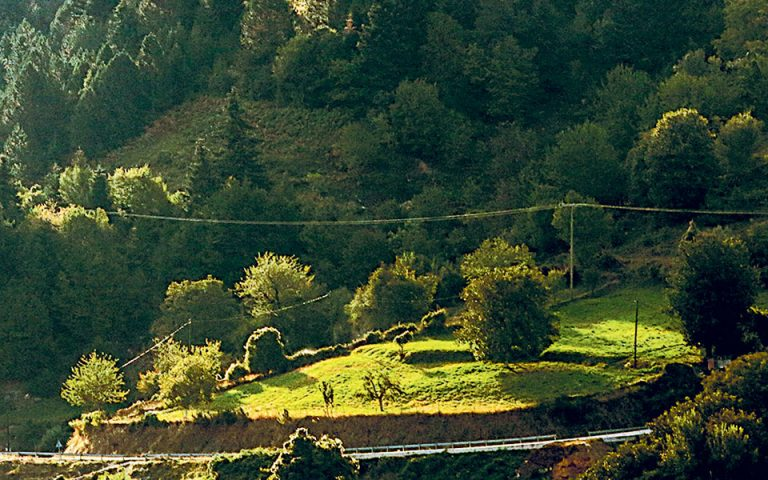 Νέες ρυθμίσεις για δασικούς χάρτες
