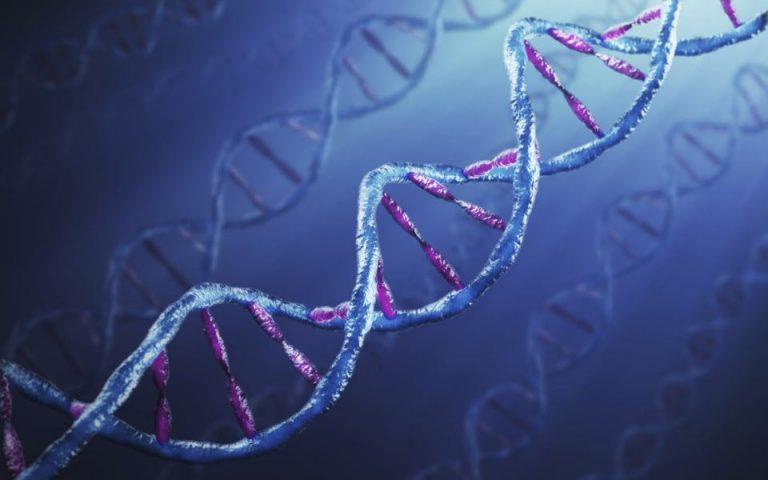 Μοριακός παράγοντας ξεριζώνει τα κύτταρα του πολλαπλού μυελώματος