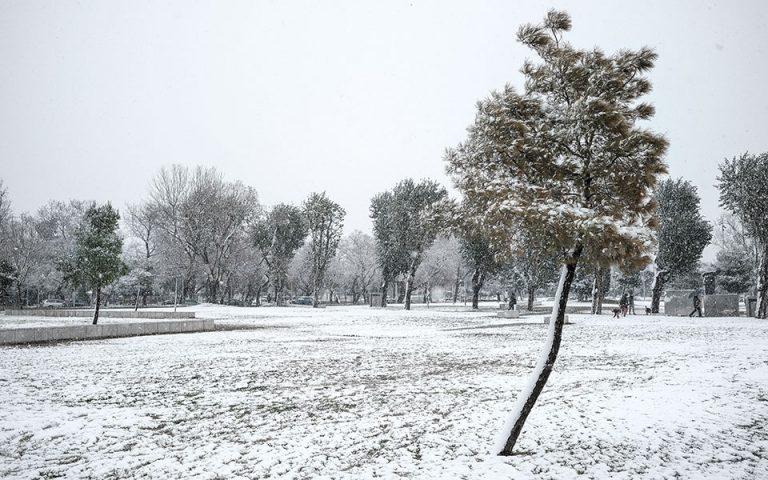 Meteo: Δεν ξεπερνά το 6% η έκταση που καλύπτεται από χιόνια στην Ελλάδα