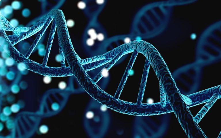Το γονιδίωμα και η γλώσσα: βίοι παράλληλοι