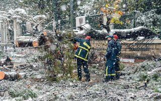 Πρωτοφανείς εικόνες αντίκρισαν χθες το μεσημέρι οι διερχόμενοι από το κέντρο της Αθήνας, καθώς από τη σφοδρή χιονόπτωση έπεσε δέντρο στη Βασιλίσσης Σοφίας, στο ύψος του Εθνικού Κήπου, προκαλώντας προβλήματα στην κυκλοφορία των οχημάτων. Στο σημείο έσπευσαν άνδρες της Πυροσβεστικής, για να κόψουν και να απομακρύνουν το δέντρο (φωτ. INTIME NEWS / ΖΑΧΟΣ ΓΙΩΡΓΟΣ).