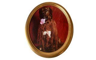 Ο σκύλος μου ο Μούργος με μια δημιουργία της Σοφίας Βάμιαλη στον λαιμό. Το μακρινό 1998. (ΦΩΤΟΓΡΑΦΙΑ: ΔΗΜΗΤΡΗΣ ΤΣΟΥΜΠΛΕΚΑΣ)