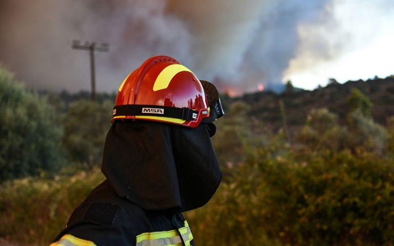 Ηράκλειο: Οι ισχυροί άνεμοι εμποδίζουν τη κατάσβεση πυρκαγιάς στο Μαλεβίζι