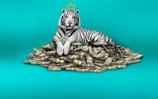 i-tainia-the-white-tiger-sto-noymero-1-sto-netflix-se-64-chores0