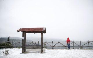 Φωτ. ΑΠΕ-ΜΠΕ/ ΔΗΜΗΤΡΗΣ ΤΟΣΙΔΗΣ