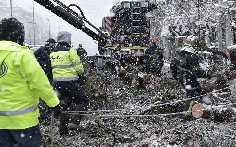 Πάνω από 3.000 κλήσεις στην Πυροβεστική λόγω «Μήδειας»