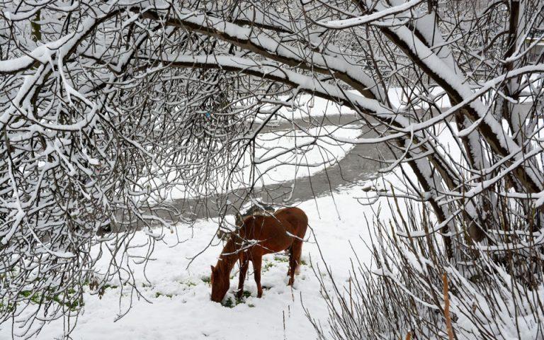 Επιμένει η κακοκαιρία με χιόνια και παγετό