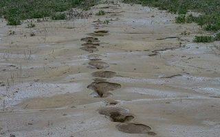Γεωολογικά φαινόμενα στην ευρύτερη περιοχή της Ελασσόνας μετά το σεισμό. ΙΝ.ΤΙΜΕ
