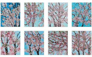 Προς πώληση εκτυπώσεις του Ντ. Χιρστ που απεικονίζουν κλαδιά κερασιάς.