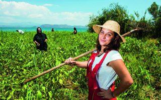 Αγρότισσα πρώτης γενιάς, η Δήμητρα κατάφερε όχι μόνο να επιβιώσει αλλά και να διακριθεί σε έναν χώρο παραδοσιακά ανδροκρατούμενο. (Φωτογραφίες: Άγγελος Γιωτόπουλος)