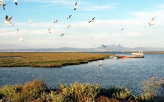 Η περιοχή του εθνικού πάρκου Δέλτα Αξιού - Λουδία - Αλιάκμονα οριοθετήθηκε με κοινή υπουργική απόφαση το 1998.