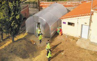 Το υπερσύγχρονο θερμοκήπιο βρίσκεται στην αυλή του σχολείου. Το ένα παρτέρι φιλοξενεί αρωματικά φυτά, το άλλο λαχανικά της εποχής.