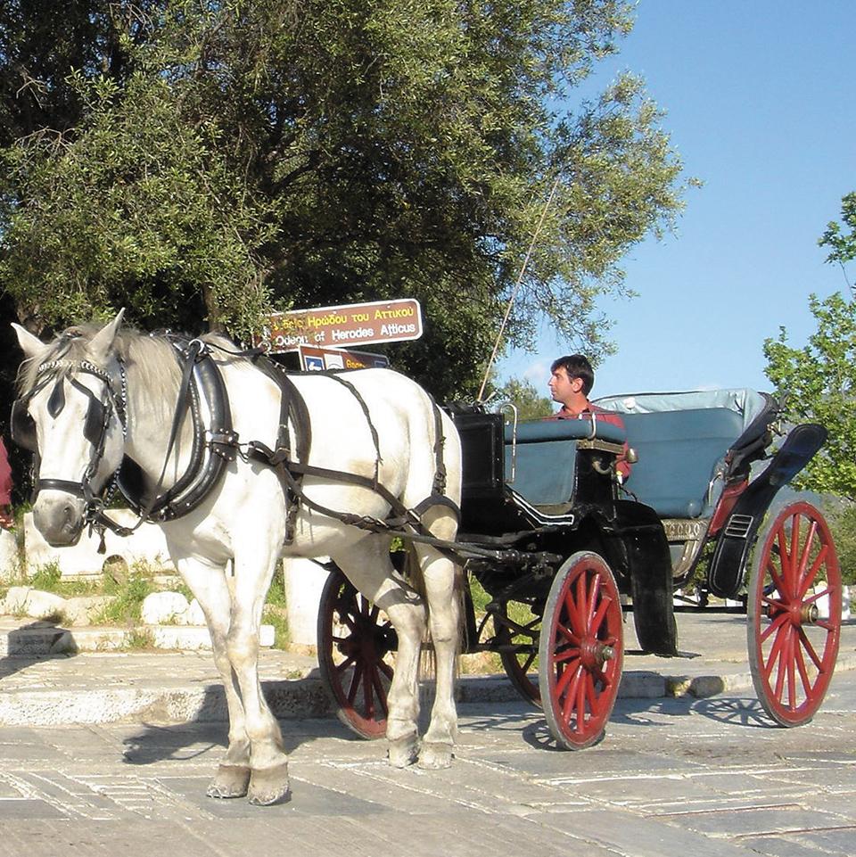 o-teleytaios-amaxas-tis-akropolis-giorgos-stayridis-kai-o-kataleykos-makis-mas-perimenoyn-gia-volta3