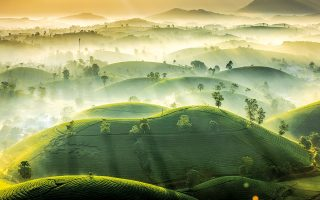 Βιετνάμ © VU TRUNG HUAN/ROYAL METEOROLOGICAL SOCIETY