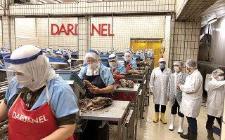 Η Dardanel ιδρύθηκε το 1984 κι έχει την έδρα της στο Τσανάκαλε. Είναι η πρώτη τουρκική εταιρεία που διέθεσε στην τουρκική αγορά τόνο σε κονσέρβα και το 1994 εισήχθη στο Χρηματιστήριο Κωνσταντινούπολης.