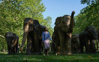 Οι ελέφαντες του Λονδίνου
