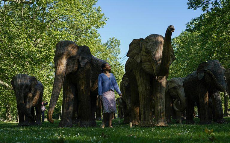 oi-elefantes-toy-londinoy0