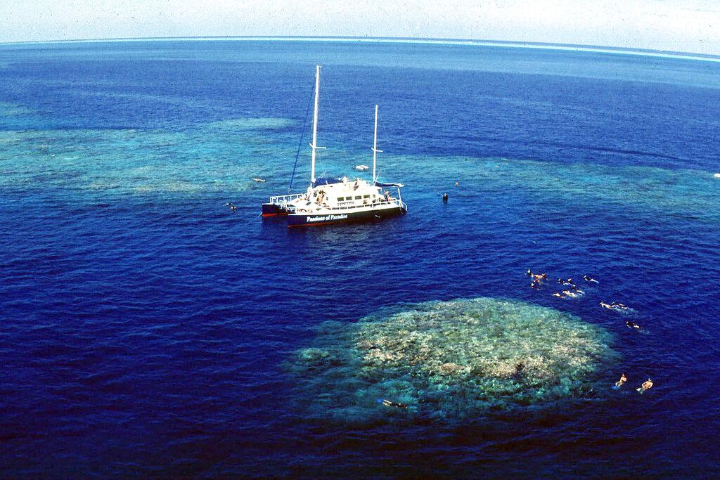 perivallontiki-kontra-oie-aystralias-gia-ton-megalo-koralliogeni-yfalo3