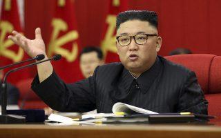 sta-oria-neoy-limoy-i-v-korea-o-kim-giongk-oyn-paradechthike-tetameni-diatrofiki-katastasi-561400966
