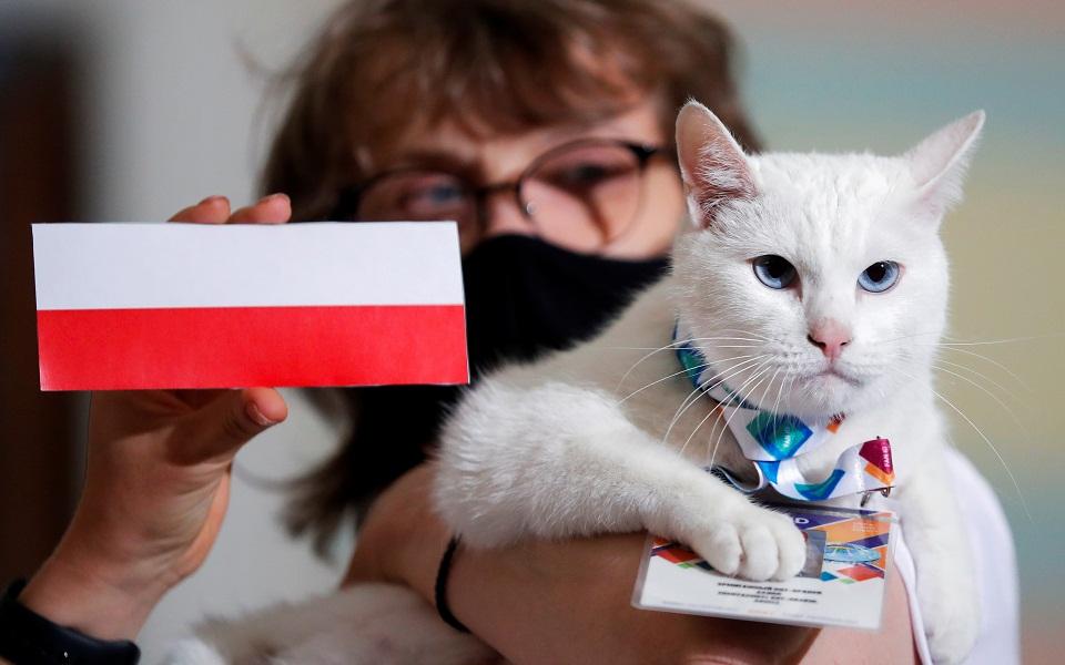 euro-2021-o-achilleas-o-gatos-saronei-stis-provlepseis-eikones5