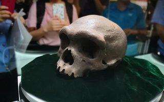 to-archaio-kranio-poy-mporei-na-xanagrapsei-tin-istoria-tis-anthropinis-exelixis-561412153