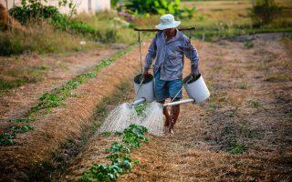 counter-agriculture-enas-geoponos-stin-tsepi-mas0