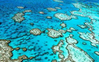 Φωτ: SHUTTERSTOCK. ΟΜεγάλος Κοραλλιογενής Ύφαλος(Great Barrier Reef) είναι ο μεγαλύτεροςκοραλλιογενής ύφαλος στον κόσμο, ορατός και από το διάστημα