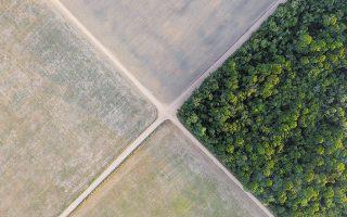 Η κυβέρνηση του προέδρου της Βραζιλίας, Ζαΐρ Μπολσονάρο, έχει επικριθεί έντονα για την ενθάρρυνση της αποψίλωσης των δασών, η οποία έχει αυξηθεί μέσα σε 12 χρόνια (φωτ. A.P. Photo / Leo Correa, File).