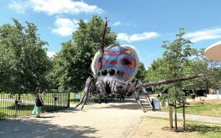 o-ichos-tis-arachnis-poy-plekei-moysiki-tis-gis-561439594