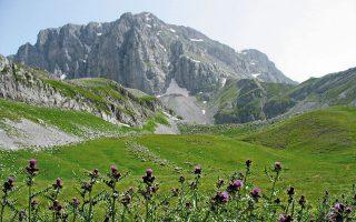 Η Πίνδος είναι ιδανική περιοχή για την ανάπτυξη αειφόρων ειδών τουρισμού, σαν την πεζοπορία και άλλες υπαίθριες δραστηριότητες, όπως έγινε σε άλλες ορεινές περιοχές της Ευρώπης που αντιμετώπιζαν προβλήματα ερήμωσης.