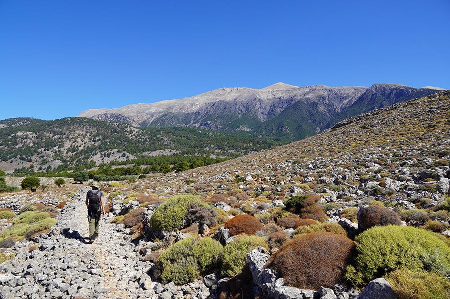 chania-trails-ta-chania-deichnoyn-to-monopati5
