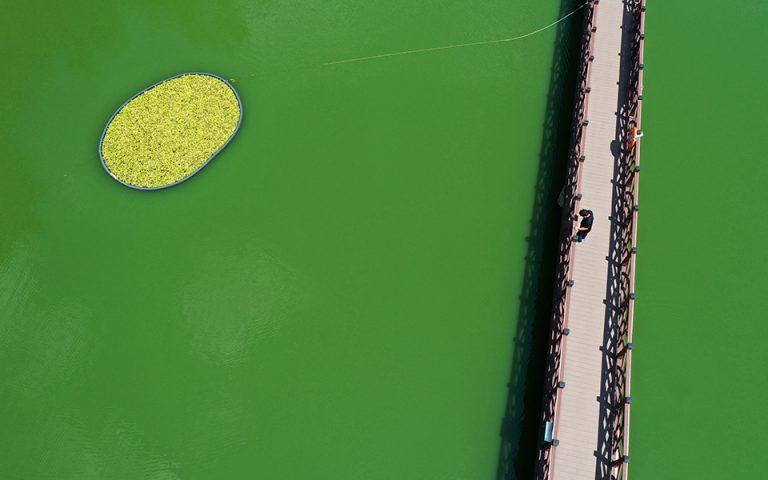 Πράσινο στα νερά