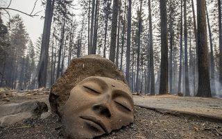 Δάση χωρίς νύμφες