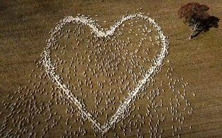 Δεν είναι έρωτας αλλά αγάπη