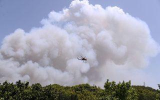 Στιγμιότυπο από την πρόσφατη πυρκαγιά στην Αρχαία Ολυμπία. Φωτ. ΙΝΤΙΜΕ