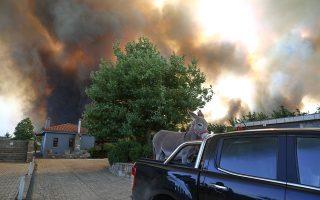 Οι φλόγες καταβροχθίζουν ό,τι βρουν στο πέρασμά τους και οι άνθρωποι προσπαθούν να σώσουν τις ζωές τους, τις περιουσίες τους, τα ζώα. Κατοικίδια και όχι μόνον (φωτ. INTIME NEWS).