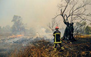 Η Κύπρος, η Γαλλία, η Ρουμανία, η Σουηδία, η Κροατία, το Ισραήλ, οι ΗΠΑ και η Ελβετία έχουν στείλει μέσα και προσωπικό για να συμβάλουν στην κατάσβεση των πυρκαγιών (φωτ. SOOC).