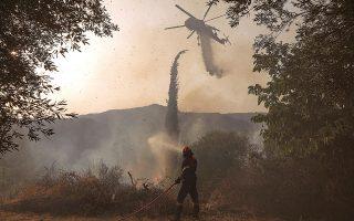 Σύμφωνα με ανακοίνωση της Πυροσβεστικής, στις δυνάμεις που είχαν αναπτυχθεί χθες στις δασικές πυρκαγιές της αρχαίας Ολυμπίας στην Ηλεία και της Γορτυνίας στην Αρκαδία περιλαμβάνονταν περισσότεροι από 570 πυροσβέστες με 30 ομάδες πεζοπόρων τμημάτων, 181 οχήματα, ενώ συμμετείχαν στην κατάσβεση και αποστολές από τη Γαλλία, τη Βρετανία και τη Γερμανία (φωτ. INTIME NEWS).